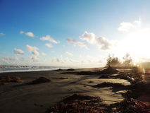 Extrémité de la plage Photo libre de droits