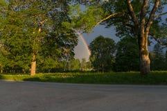 Extrémité du bac du lutin de Rainbow Images stock