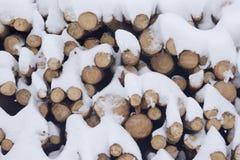 Extrémité ronde de bois. Images libres de droits