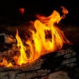 Extrémités de flamme sur le bois de chauffage. Photo stock