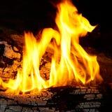 Extrémités de flamme sur le bois de chauffage. Photos stock