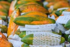 Extra jumboformat av mogen stor gul papayafrukt som slås in i prot Royaltyfri Fotografi
