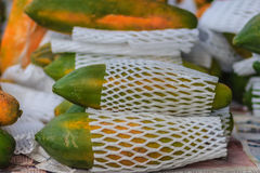 Extra jumboformat av mogen stor gul papayafrukt som slås in i prot Arkivbild
