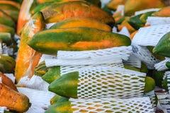 Extra jumboformat av mogen stor gul papayafrukt som slås in i prot Royaltyfria Bilder