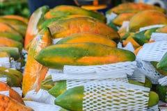 Extra jumboformat av mogen stor gul papayafrukt som slås in i prot Arkivbilder