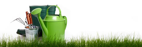 Extra large horizontal strip of grass Royalty Free Stock Photography
