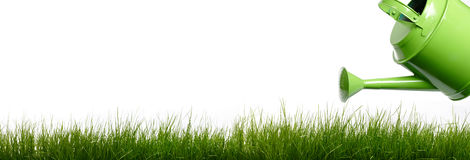 Extra large horizontal strip of grass Royalty Free Stock Images