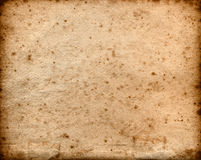 Extra large old rough paper background Royalty Free Stock Photo