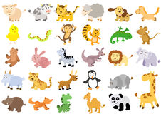 Extra large set of animals Royalty Free Stock Images