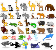 Extra large set of animals including lion,  vector Royalty Free Stock Photos