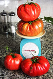 Extra large tomatoes on a scale Royalty Free Stock Photos