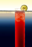 Extra long longdrink with lemon. A red longdrink with slice of lemon in waterside evening ambiance stock images