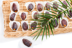 Extra medjool dates fruits. Royalty Free Stock Images