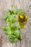 Extra virgin olive oil and basil. Extra virgin olive oil in a glass and basil on wood Stock Photo
