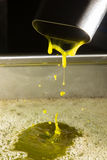 Extra virgin olive oil. Olive oil poor fall out an modern oil mill Stock Images