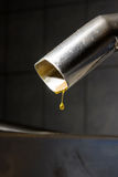 Extra virgin olive oil. Olive oil poor fall out an modern oil mill Stock Image