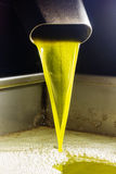 Extra virgin olive oil. Olive oil poor fall out an modern oil mill Stock Photos