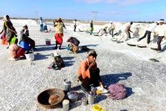 Extracción de sal en la India Foto de archivo libre de regalías