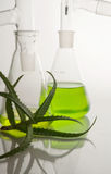 Extract of plants. Natural chemistry. Stock Photos