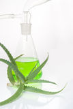 Extract of plants. Natural chemistry. Royalty Free Stock Photography