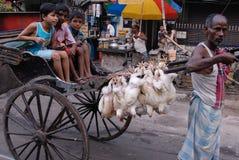 Extracteur de pousse-pousse dans Kolkata Images libres de droits