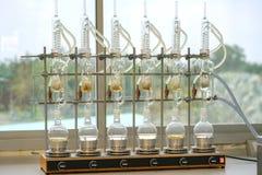 Extracteur de Soxhlet Percolateur-chaudière et reflux, flas de distillation Photo stock