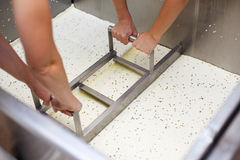 Extracting curd of a Vat-Machine in a Cheesemaker Royalty Free Stock Images