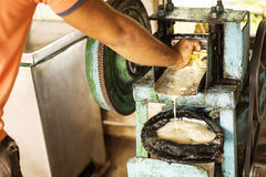 Extracting sugar cane juice with old traditional machine Royalty Free Stock Photo