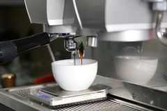 Extraction de caf? versant dans une tasse de machine professionnelle de caf? avec le fond int?rieur de barre image stock