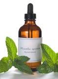 Extraction de menthe verte ou huile essentielle Images libres de droits