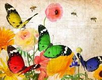 Extracto de la fauna de la naturaleza Imagen de archivo libre de regalías
