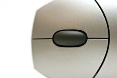extracto de la macro del ratón Imagen de archivo