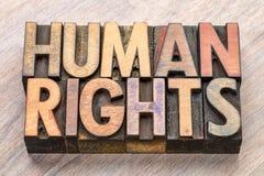 Extracto de la palabra de los derechos humanos en el tipo de madera foto de archivo libre de regalías