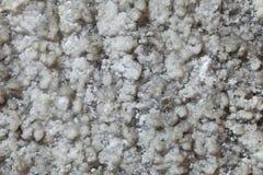 Extracto de la pared de la sal Imagen de archivo libre de regalías