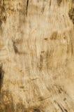 Extracto de madera del amarillo de la textura viejo foto de archivo libre de regalías