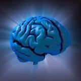Extracto del cerebro humano stock de ilustración
