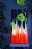 Extracto del cristal Foto de archivo libre de regalías