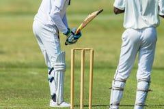 Extracto del encargado del wicket del bateador de la acción del grillo Foto de archivo