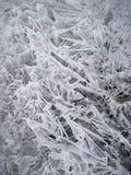 Extracto del hielo Imagenes de archivo