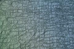 Extracto del suelo de mar Fotos de archivo libres de regalías