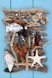 Extracto del tesoro de la playa Imagen de archivo libre de regalías