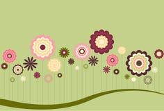 Extracto floral Fotografía de archivo libre de regalías