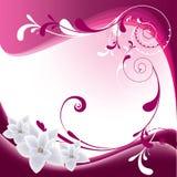 Extracto floral rosado Fotos de archivo