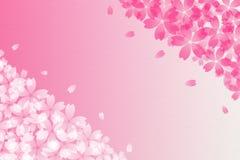 Extracto japonés de la flor de cerezo y fondo de papel rosado del vintage Fotografía de archivo