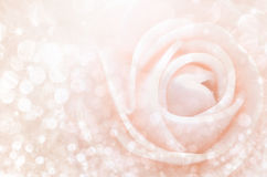 Extracto Las rosas dulces del color en bokeh texturizan la falta de definición suave Fotografía de archivo libre de regalías