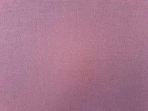 Extracto rosado del amortiguador Fotos de archivo