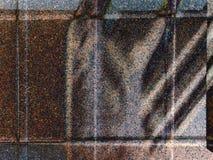 Extracto: Sombra en la pared Fotografía de archivo