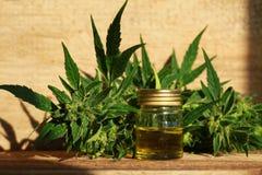Extrait d'huile de cannabis et usine médicaux de chanvre photographie stock libre de droits