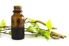Extrait de bouleau dans une petite bouteille et branches avec les feuilles fraîches i Image stock
