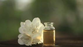 Extrakt av blommor p? tr?bakgrund i h?rlig exponeringsglaskrus arkivfilmer